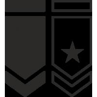 Шевроны армии США