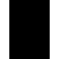 Символ Венеры