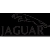 Jaguar - Ягуар