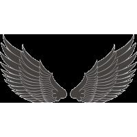 Крылья
