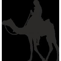 Наездник на верблюде