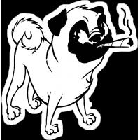 Мопс с сигаретой