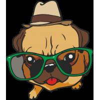 Мопс в очках и шляпе