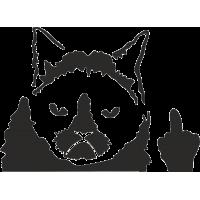 Унылый кот показывает Fuck(средний палец)