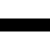 Логотип празднования 75-й годовщины Победы в Великой Отечественной войне 1941–1945 годов (Вариант Б)